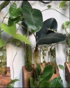 Bedroom Plants Decor, House Plants Decor, Plant Decor, Faux Plants, Indoor Plants, Cactus Plants, Indoor Plant Wall, Hanging Plants, Hydroponic Plants
