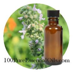peppermint oil:  Commonly Used for:  Cold, Flu and Fever  IBS, Boweld Disorders, Constipation  Menstrual Cramps  Headaches, Migraines  Apathy, Mental Tiredness, Fatigue  Chest and Sinus Congestion  Muscle Pain, Aches  Jet Lag, Motion Sickness, Nausea  Poor Circulation
