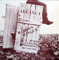 Arcane V - Marron Dingue (Vinyl, LP, Album) at Discogs Cover, Books, Lp Album, French, Libros, French People, Book, French Language, Book Illustrations