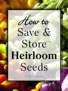 Southern Mom Loves: How to Save and Store Heirloom Seeds