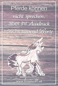 Pferde können nicht sprechen, aber ihr Ausdruck spricht tausend Worte. - lenin0a1.at