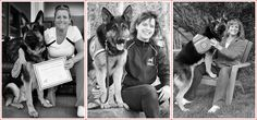 Mission / History | Canadian Service Dog Foundation Military Working Dogs, Herding Dogs, Police Dogs, Search And Rescue, Service Dogs, German Shepherd Dogs, This Is Us, Art Therapy, History