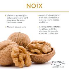 Une petite poignée de #noix par jour apporte tout cela à votre organisme.