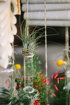 hanging greenery in beakers // photo by Awake Photography // http://ruffledblog.com/industrial-science-styled-shoot