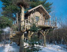 Tree House - Custom handcrafted log homes by Maple Island Log Homes
