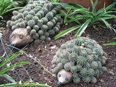 Reciclagem e jardinagem Olha só que idéia de reciclagem e reutilização de materiais no jardim. Este lindo ouriço com garrafa pet.