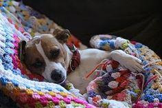 Comfy crochet ...