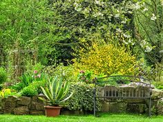 #neuer Gartentraum Frühling