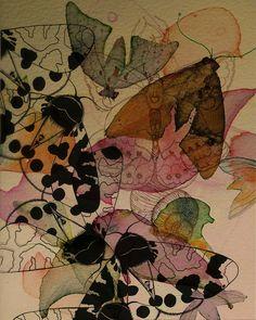 Black Moths by Colleen Parker, via Flickr