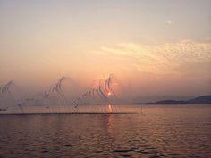西湖音乐喷泉 by EndlessJune, via Flickr