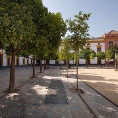Francisco Reina    Cripta del Patio de Banderas (Sevilla, España)    © Fernando Alda