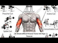 Dumbbell Bicep Workout, Big Biceps Workout, Gym Workout Chart, Gym Workout Tips, Workout Fitness, Yoga Fitness, Weekend Workout, Gym Tips, Workout Men