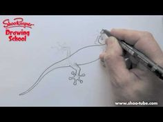 How to draw a gecko - Shoo Rayner Drawing School - YouTube