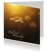 Fleur de zieke op met een kaart, kies bijvoorbeeld een mooie kaart met Bijbeltekst!