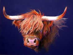 Highland Cow Portrait Cattle Farm Matted Art Print