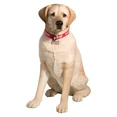 Sandicast Adult Yellow Labrador Retriever Sculpture The most popular pooch in the world! These dogs are known for being gentle and fun-loving! This Sculpture was created by interna