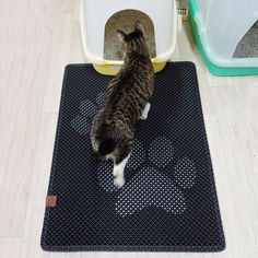 Blackhole Cat Litter Mat Catches Almost All Litter When Your Cat Coming Out of The Litter Box