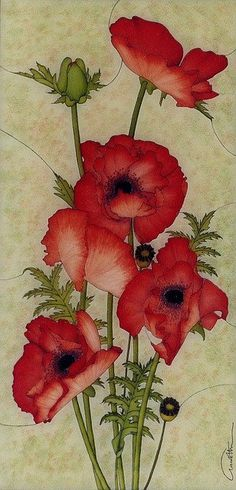 Claire Fairweather had this. I like flowers and color