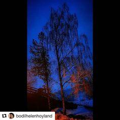 Stolt. #reiseblogger #reiseliv #reisetips  #Repost @bodilhelenhoyland with @repostapp  #hjeltnesvidaregåandeskule#ulvik#perlaihardanger#norway2day#wings_world#dreamynorway#dreamchasersnorway#illife_natura#ip_connect #earthislimit#fiftyshades_of_twilight#imagesofnorway#vibrantnorway#bns_ladies#fever_natura#lifeandemotive#beautifultaiga#share_your_shots