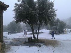 Al cole . Snow, Outdoor, Outdoors, Outdoor Games, The Great Outdoors, Eyes, Let It Snow
