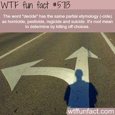 Killing of choices - WTF fun fact