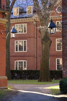 Harvard Yard. DiscoverHarvard.com