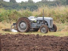 Grey 'fergie' tractor at local ploughing competition. www.humblescoughfarm.co.uk