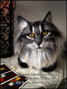Meet Casamir - the cat of the fortune teller  - LIFE SIZE NEEDLEFELTED CAT
