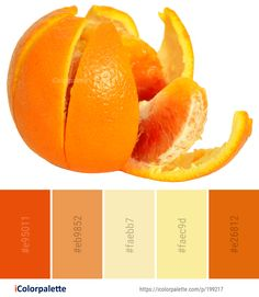 Color Palette Ideas from Fruit Produce Orange Image Orange Color Palettes, Colour Pallete, Color Combinations, Color Schemes, Orange Fruit, Brown Aesthetic, Mellow Yellow, Color Card, Color Theory