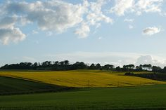Rolling hills outside Bo'ness, Scotland