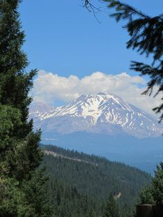 mount shasta asian single men Interactive and printable 96067 zip code maps, population demographics, mount shasta ca real estate costs, rental prices, and home values.