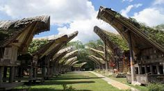 Top Indonesia Sightseeing Attractions - Toraja Land, a good country district of South Sulawesi, home of the Toraja individuals.