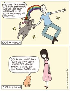 I grew up with a cat, I was conditioned and now I don't know how to act around dogs ;P #cat #funny