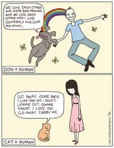 cats, anim, laugh, dogs, stuff, funni, true, humor, thing