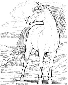 Dover Coloring Pages - Horses   my grandson, has to horses and i would love to draw and paint this.for him .thank you.