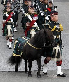 About 350 service personnel marched through the streets led by a brass band and their Shetland pony mascots. (PA)