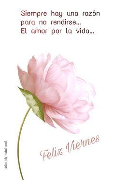 #FELIZVIERNES ☕️ ➰ #FINDESEMANA 👓🌞  #CONSULTASDETAROT #TAROTRESULTADOS #TAROTDELAMOR #TAROTACIERTOS #AMOROCULTO #FUTUROLOGÍA #TAROTBARATO #FECHASTAROT #SIONO  #HORÓSCOPO #LEO #LIBRA #ARIES #PISCIS #VIRGO #TAURO #GÉMINIS #CÁNCER  #ACUARIO #ESCORPIO #SAGITARIO #CAPRICORNIO