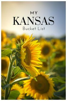 Kansas Bucket List – Great list of unique places to visit, amazing hikes, and the most memorable restaurants in Kansas. Kansas Bucket List – Great list of unique places to visit, amazing hikes, and the most memorable restaurants in Kansas. Bucket Lists, Places To Travel, Places To See, Travel Destinations, Monument Rocks, Lawrence Kansas, Things To Do, How To Memorize Things, Travel Usa