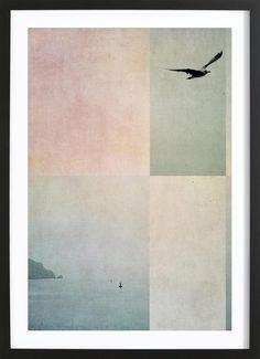 Fly Away als Framed Poster door Ingrid Beddoes   JUNIQE