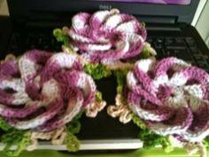 Meus tesouros: Flor bergamota