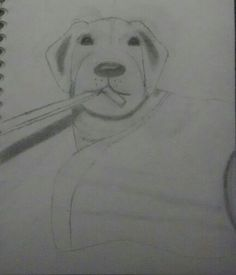 I love dogs I love them so much that I had to draw one!!