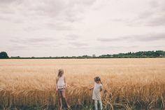 Confetti fields | carolyn carter blog
