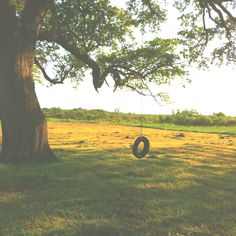 I would love a tire swing, or any type of swing at my house someday