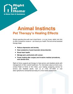 Pet Therapy Helps #SeniorCare - #AnnArbor Michigan. #seniorhealth . For more information and additional senior care tips, visit http://www.rightathome.net/washtenaw/blog/.