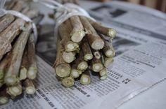 Rameaux à moelle : ronce, rosier, buddleia, deutzia, sureau, framboisier, soleil vivace, hortensia… Coupez chaque rameau à moelle en tronçons bien droits de 20 à 30 cm de longueur. Liez une quinzaine de tiges à moelle d'égale longueur mais de diamètres différents en formant un joli fagot. Gardez les à l'abri de la pluie dans l'attente de leur mise en place au jardin.