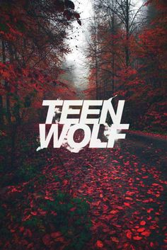 Teen Wolf wallpaper for you fans out there. I know it's random. Plz bear wit… Teen Wolf wallpaper for you fans out there. Teen Wolf Art, Teen Wolf Scott, Teen Wolf Quotes, Teen Wolf Memes, Teen Wolf Dylan, Teen Wolf Stiles, Teen Wolf Logo, Scott Mccall, Derek Hale