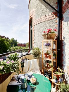 Great example of a simple, yet affordable balcony garden space.