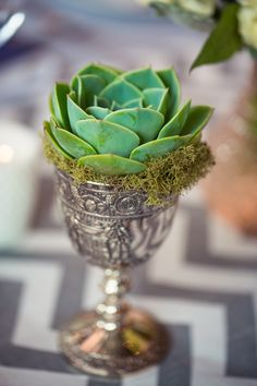 "I love using old ""found"" silver cups/goblets/saucers etc...to drop in succulents, violets or any other item as decor. You can then give these away at the end of the night as unique little gifts for any person attending. In addition, if you use succulents they can be planted in the garden for a ""wedding garden"" or applied to a hanging wall wreath as a memory."