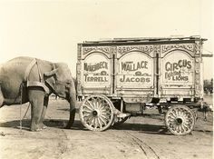 vintage circus wagon photo