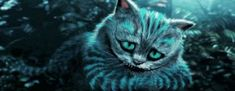 48 super Ideas quotes alice in wonderland cheshire cat tim burton Cheshire Cat Tim Burton, Cheshire Cat Alice In Wonderland, Dark Gif, Guess The Movie, Tim Burton Style, Good Tattoo Quotes, Chesire Cat, Cat Aesthetic, Disney And More
